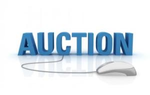 143139-425x268-online_auction