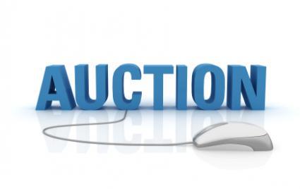143139-425x268-online_auction