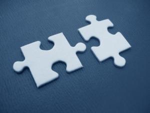 puzzle_niche